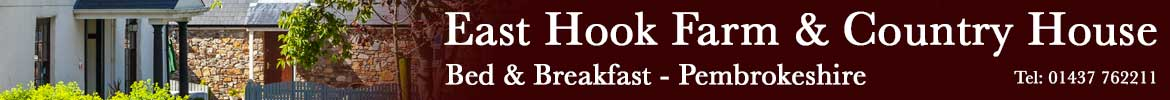 East Hook Farmhouse Bed & Breakfast - Pembrokeshire
